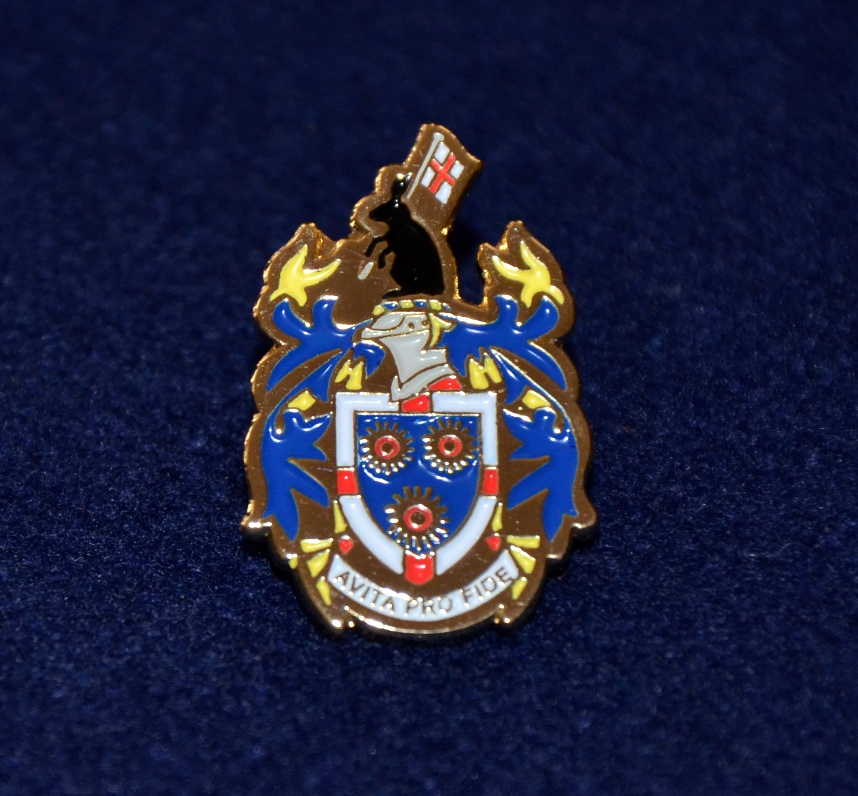 School Crest lapel pin